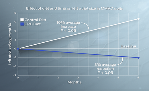 effect-of-diet-and-time-on-left-atrial-size-in-mmvd-dogs